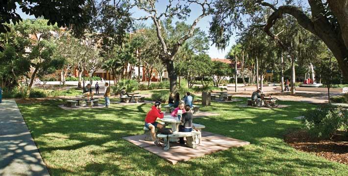 Parc in Targusor Copou