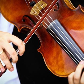 Viola being played